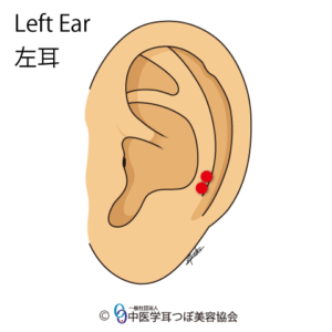 ear reflex point of Cervical Vertebrae on the left ear