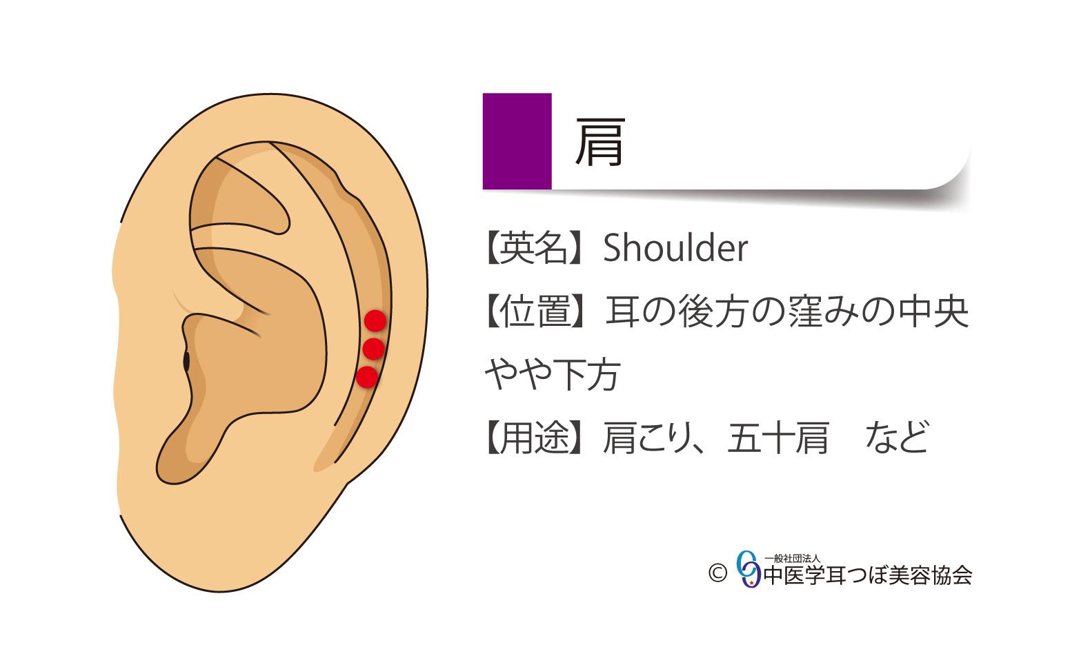 肩の耳つぼの位置