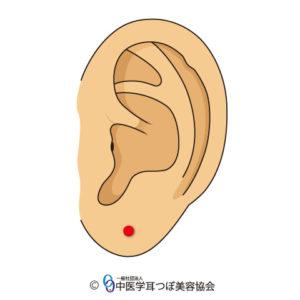 ear reflex point of eye on the  left ear