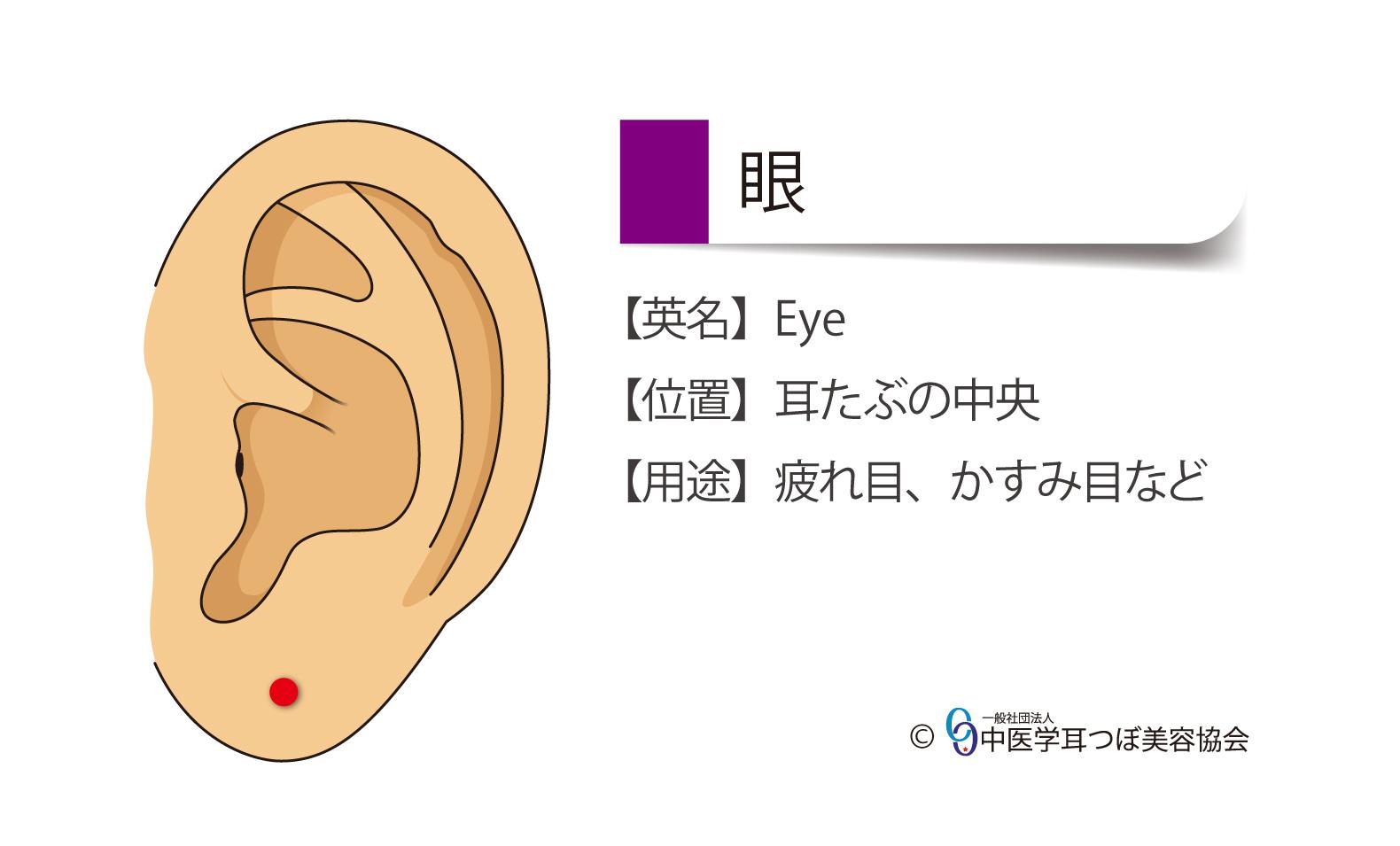眼(目)の耳つぼの位置