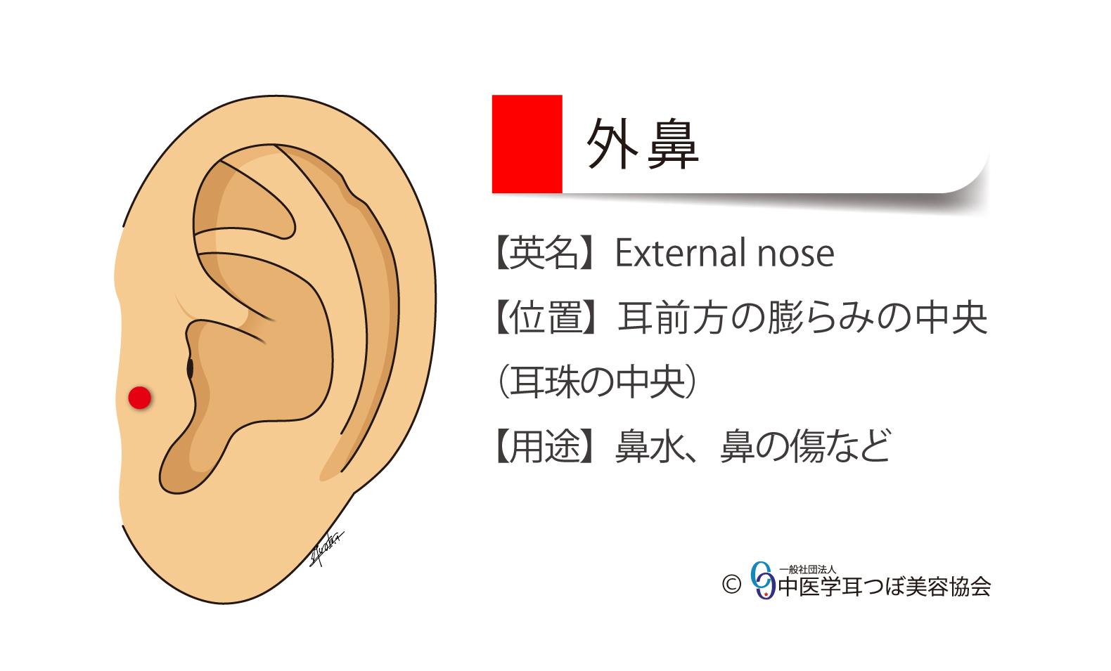 057c-external nose